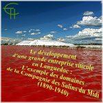 Le développement d'une grande entreprise viticole en Languedoc, <br/>la Compagnie des Salins du Midi (1890-1940)