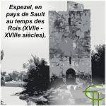 Espezel, en pays de Sault au temps des Rois (XVII<sup>e</sup> -XVIII<sup>e</sup> siècles) <br/>Croissance et Opacité. Recherche d'une formulation de la bonne ménagerie