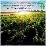 La vigne dans les domaines et seigneuries de l'Ordre de Malte en Bas-Languedoc aux XVII<sup>e</sup> et XVIII<sup>e</sup> siècles