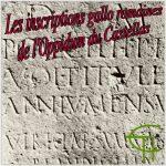 Les inscriptions gallo-romaines de l'oppidum du Castellas à Murviel-lès-Montpellier (Hérault)
