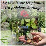 Le savoir sur les plantes : Un précieux héritage