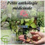 Petite anthologie médicinale muséobus 2<sup>e</sup> trimestre 1982