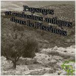 Paysages et cadastres antiques dans le Piscénois