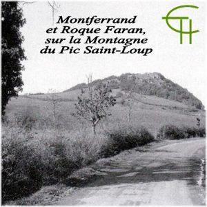 1994-15-notes-de-toponymie-i-montferrand-et-roque-farran-sur-la-montagne-du-pic-saint-loup