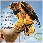 Une vervelle de la famille de Thézan découverte à Marseillan (Hérault)
