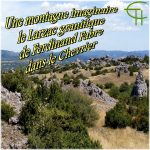 Une montagne imaginaire Le Larzac granitique de Ferdinand Fabre dans le Chevrier
