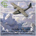 Les belligérants dans le ciel du Languedoc pendant la Seconde Guerre Mondiale 1939-1945