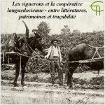 Les vignerons et la coopérative languedocienne : entre littératures, patrimoine et traçabilité