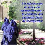 Un microcosme de la société montpelliéraine: la confrérie des pénitents bleus de Montpellier