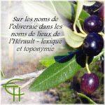 Sur les noms de l'oliveraie dans les noms de lieux de l'Hérault : lexique et toponymie