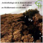 Archéobiologie de la domestication de l'olivier en Méditerranée occidentale