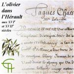 L'olivier dans l'Hérault aux XVIe et XVIIe siècles