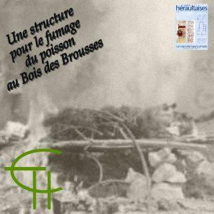 2010-40-02-une-structure-pour-le-fumage-du-poisson-au-bois-des-brousses