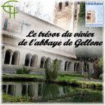 Le trésor du vivier de l'abbaye de Gellone