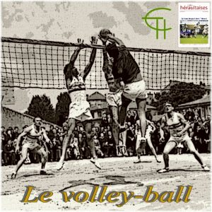 2010-b22-le-volley-ball