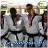 Le taekwondo