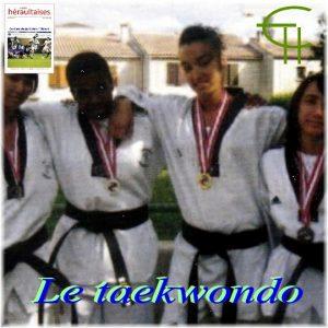 2010-b24-le-taekwondo