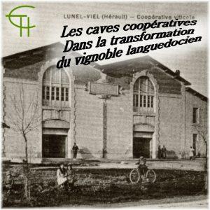 2011-b06-les-caves-cooperatives-dans-la-transformation-du-vignoble-languedocien