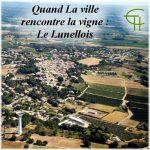Quand La ville rencontre La vigne: Le Lunellois