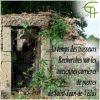 Au temps des trasseurs. Recherches sur les anciennes carrières de pierre de Saint-Jean-de-Védas