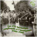 Les FFI héraultais confrontés à l'amalgame, 1944-1945