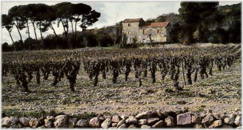 Paysage de l'Hérault
