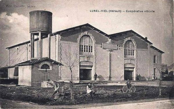 Cave coopérative de Lunel-Viel, bâtie en 1913 probablement par l'architecte A. Cassan. Carte postale de 1920.